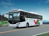 常隆纯电动城市客车YS6128EV (7图)