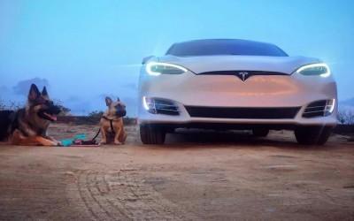 特斯拉更长续航Model S车型曝光,约合628公里