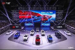 年中销量出炉 新能源汽车还看比亚迪 【图】