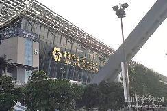 车市复苏进行时 2019广州车展已开幕