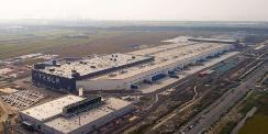 特斯拉柏林超级工厂或推迟建设 原因与蝙蝠有关