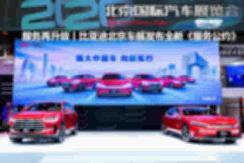 北京车展丨EV版长城炮来袭 商用版上市/乘用版开启预售 【图】