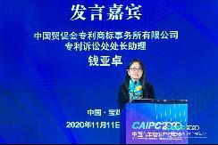 CAIPC2020   专商所钱亚卓:中美关系与在美知识产权保护