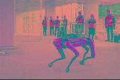 仅60亿 韩国现代收购美国网红机器狗波士顿动力